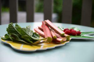 Les ingrédients pour l'eau aromatisé sont de la rhubarbe, des framboises, du sucre et de la menthe